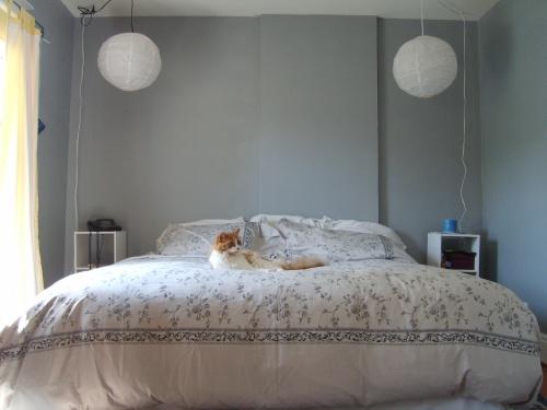 After - Master Bedroom - Chandler Approves